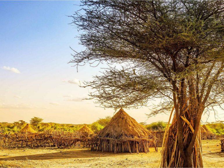 Эфиопия — информация о стране