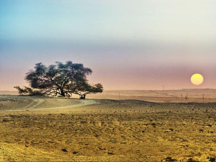 Рандомная География.Часть 95. Бахрейн. География, Интересное, Путешествия, Рандомная география, Длиннопост, Бахрейн