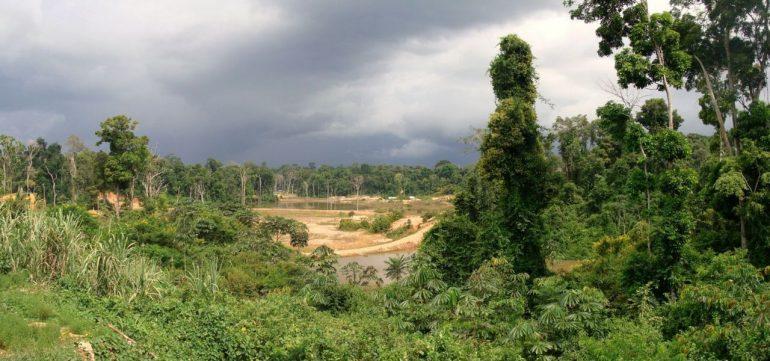 Гайана — информация о стране, достопримечательности, история