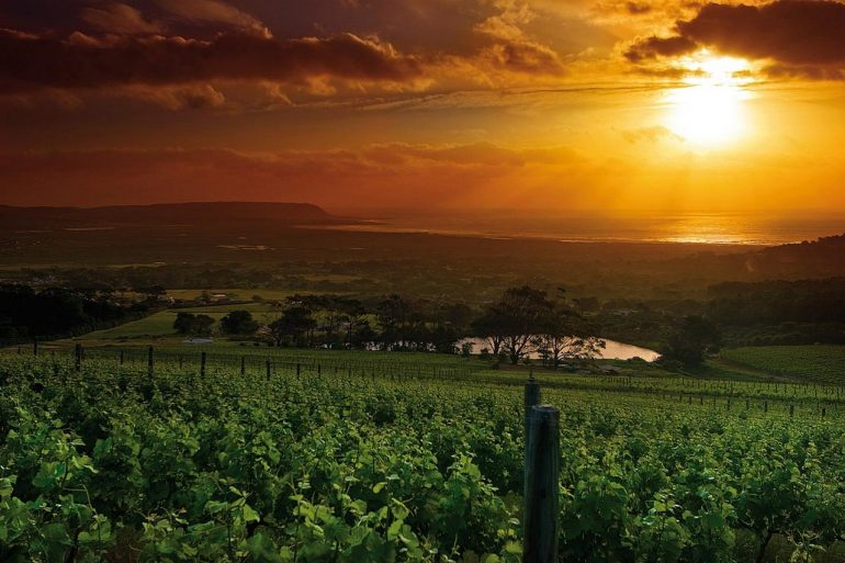 Мозамбик — информация о стране, достопримечательности, история