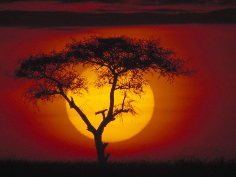 Кения — информация о стране, достопримечательности, история