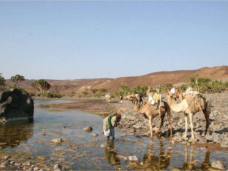Джибути — информация о стране, достопримечательности, история