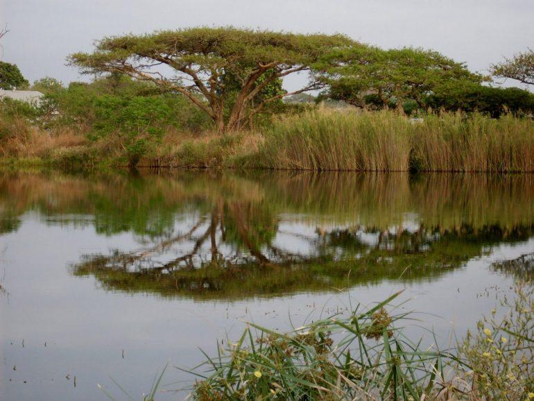 Свазиленд - информация о стране