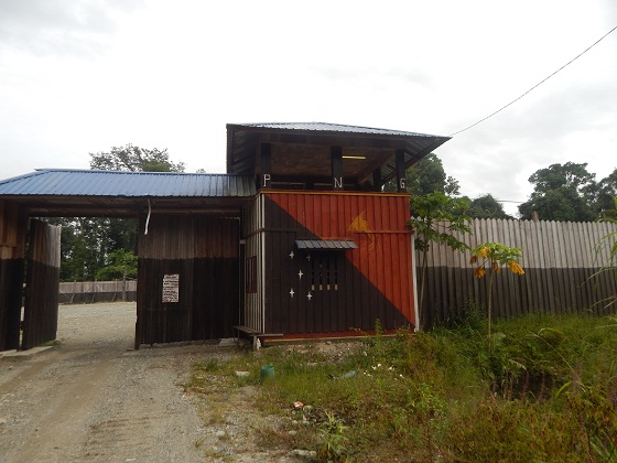 bewani oli palm company