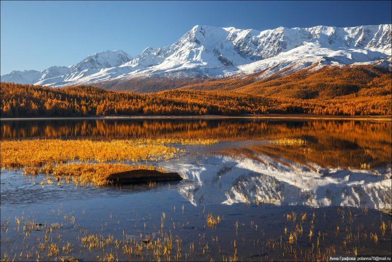 Золотая осень на Алтае