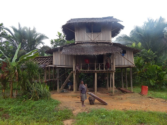 traditional building in papua new guinea