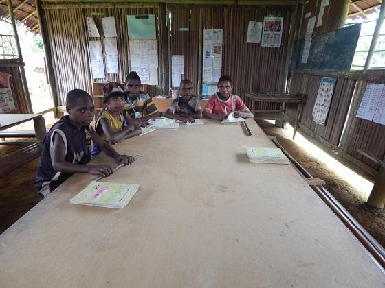 школа в папуа новой гвинее
