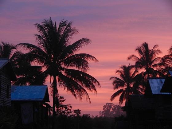 восход солнца в тропиках