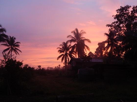 восход солнца тропики