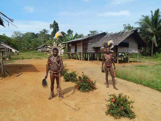 Традиционный костюм папуасов