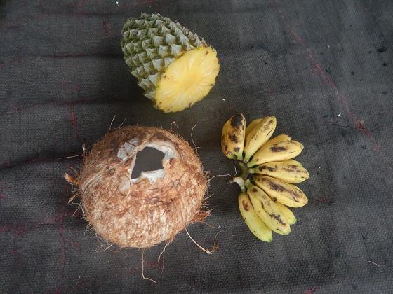 тропические фрукты папуа новая гвинея