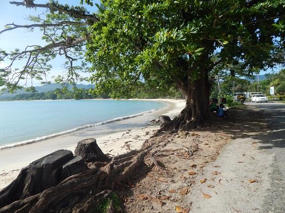 vanimo beach