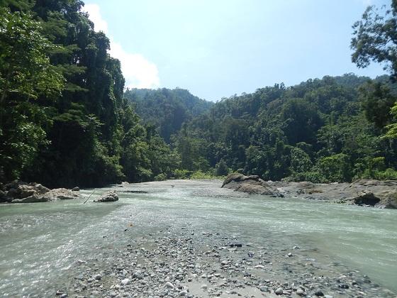 река в папуа новой гвинее